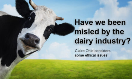 NZ dairy industry under fire over ethics